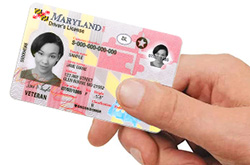 Person holding a Real ID