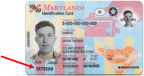 Sample of what a Maryland Veteran license looks like, it has the word - Veteran - in the lower left corner